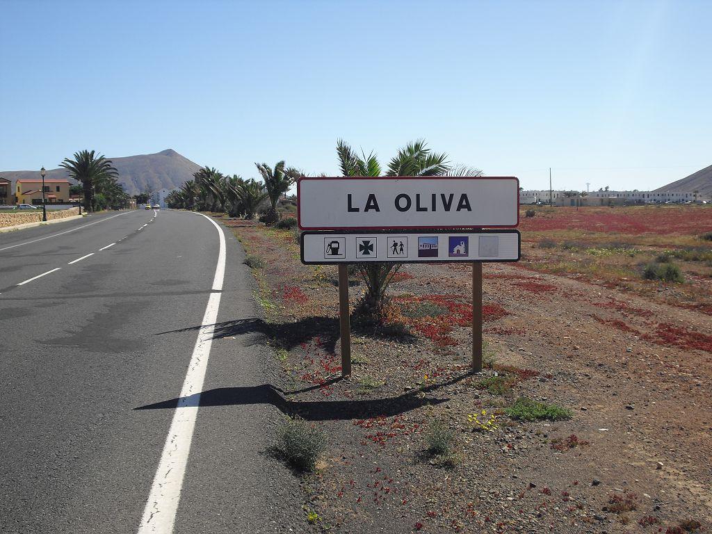 08 Olivia