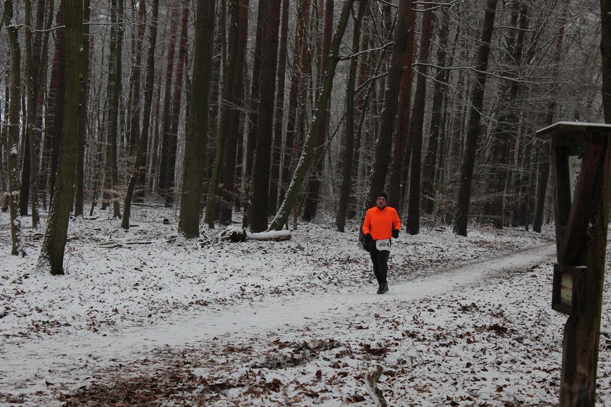 Spandauer Winterwaldlauf