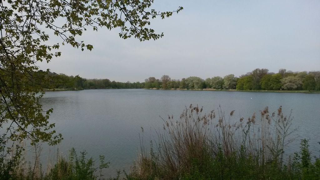 Triathlon Ingolstadt – Pre-Race Bericht