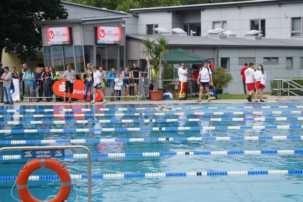 Schwimmtipps für den Laufkater