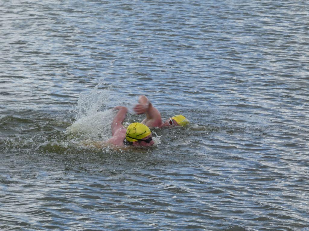 Boddenschwimmen in Ribnitz-Dammgarten