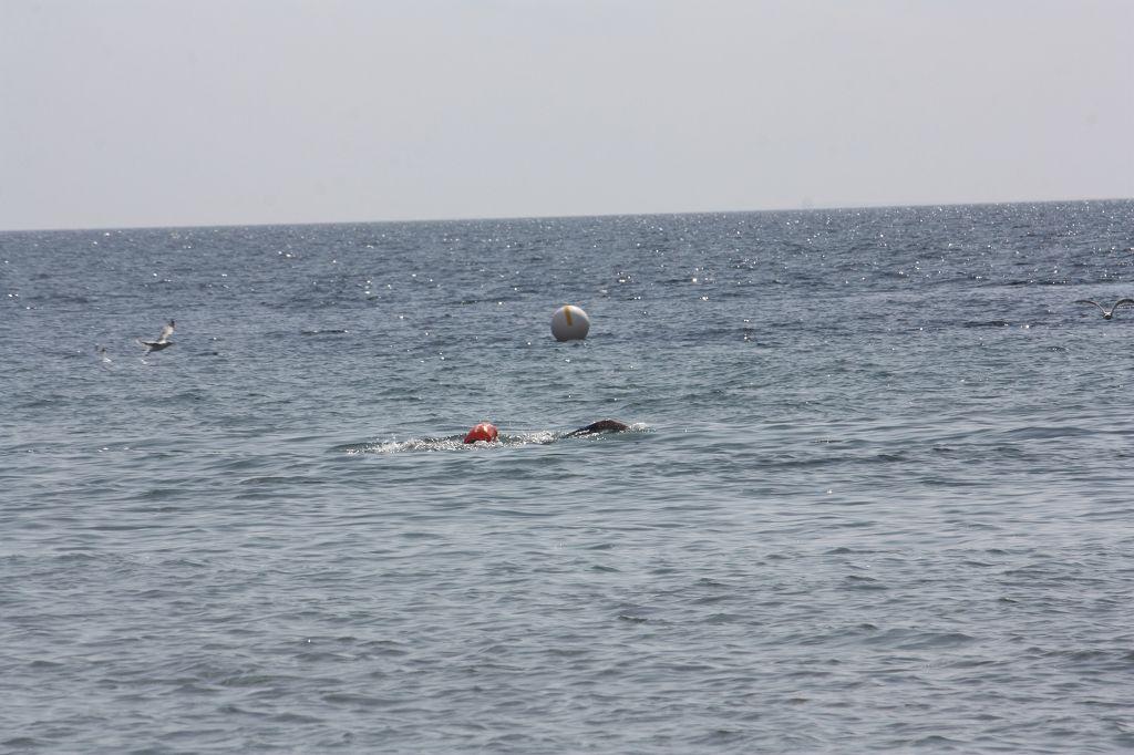 Zurück im Wasser