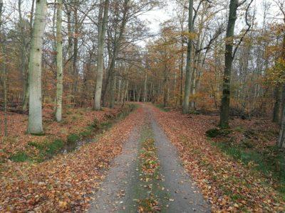 Herbsttrainingslager an der Ostsee